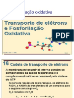 Fosforila..