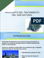 IGN 3 (Propósito del tratamiento del gas natural)