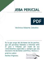 prueba-pericial-1216615138638031-8