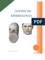 Apuntes de embriologia