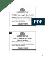 PS5216_Introducción_2008