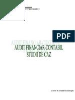 Audit Financiar-Contabil - Studii de Caz