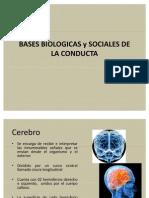 Bases Biologicas y Sociales de la Conducta