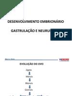 emb. gastrulaçao e neurulação