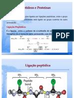 PEPTÍDEOS 1