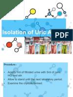 Urine Def