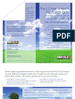 2011 Energy Advocates Natural Gas Flyer