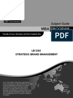 LB5302 Strategic Brand Management Outline Updated SP53 2010