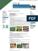Agriicultural Crops __ Cash Crops __ Sugarcane