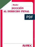 Introduccion Al Derecho Penal - Alberto Binder