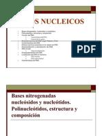 Acidos Nucleicos2