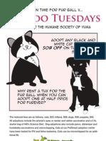 Tuxedo Tuesday Poster