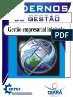 Gestão Empresarial iniciação