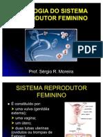 FISIOLOGIA_REPRODUTOR_FEMININO