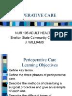 Nur 105 Adult Health 2006 Perioperative Care