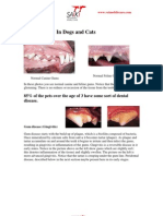 Dentistry Article for Website