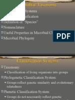 Micro Taxonomy