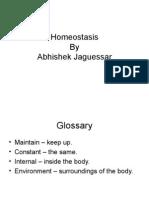 Homeostasis by Abhishek Jaguessar