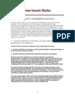 Insulin's Mechanism of Action