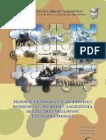 Przemoc i patologie w środowisku wojskowym - problemy, zagrożenia, skutki oraz możliwość uzyskania pomocy