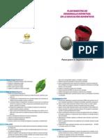 Implementacion Plan Maestro