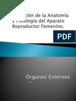 Descripción de la Anatomía y Fisiología del Aparato