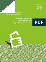 """REVISTA ISEES Vol9 - """"Pueblos indígenas y Educación Superior en América Latina"""