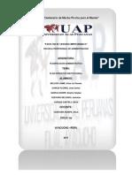 Monografia Poi Municipal Id Ad Provincial de Huamanga