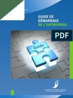 Guide de Demarrage de l Entreprise de l Ajbm Premiere Edition 2009