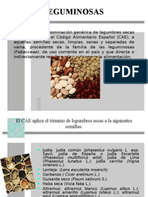 Informacion sobre la familia de las leguminosas
