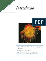 introduoabilogiacelular-110430082708-phpapp02