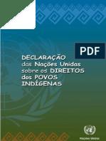 Declaração ONU Direitos Indigenas (PR-BR)
