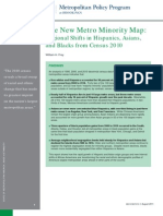 The New Metro Minority