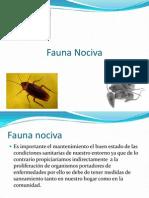 Fauna Nociva Equipo 8