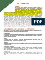 Informe de La Artrosis