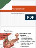 Patología biliar-valle