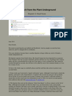 Dispatch 12 Email Scams