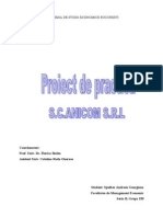 proiect-practica