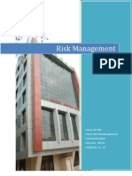 Copy of Risk Management