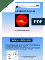 Aula - Termodinamica Quimica