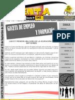 gaceta_empleo_opea_045