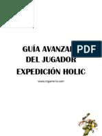 Guia_avanzada holic2