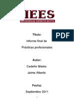 Informe Final Practicas Profesionales 2011
