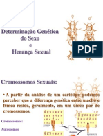 Herança sexual e Mutações- FEPECS 8, 9 e 10