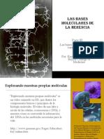 Bases Moleculares Herencia III