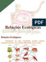 Relações ecológicas - Aula 2