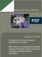 RECURSOS NATURAIS - POWER POINT