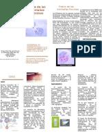 Trifoliar microbiologia