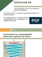 BMC1_1_MGRR[1]