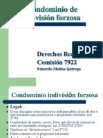 Condominio indivision forzosa 2011